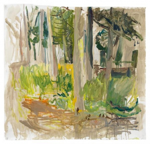untitled (trees behind studio, hospitalfield)