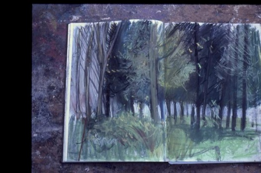 trees ( after rw) hospitalfield sketchbook